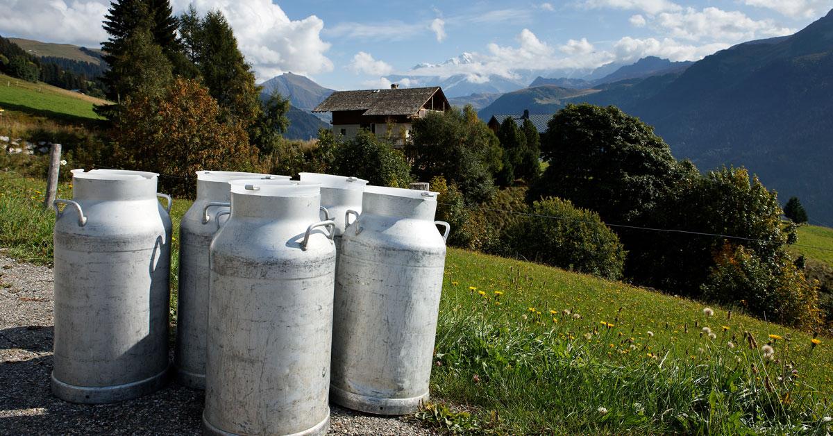 Rencontre avec les producteurs de la Coopérative laitière de Haute Maurienne Vanoise